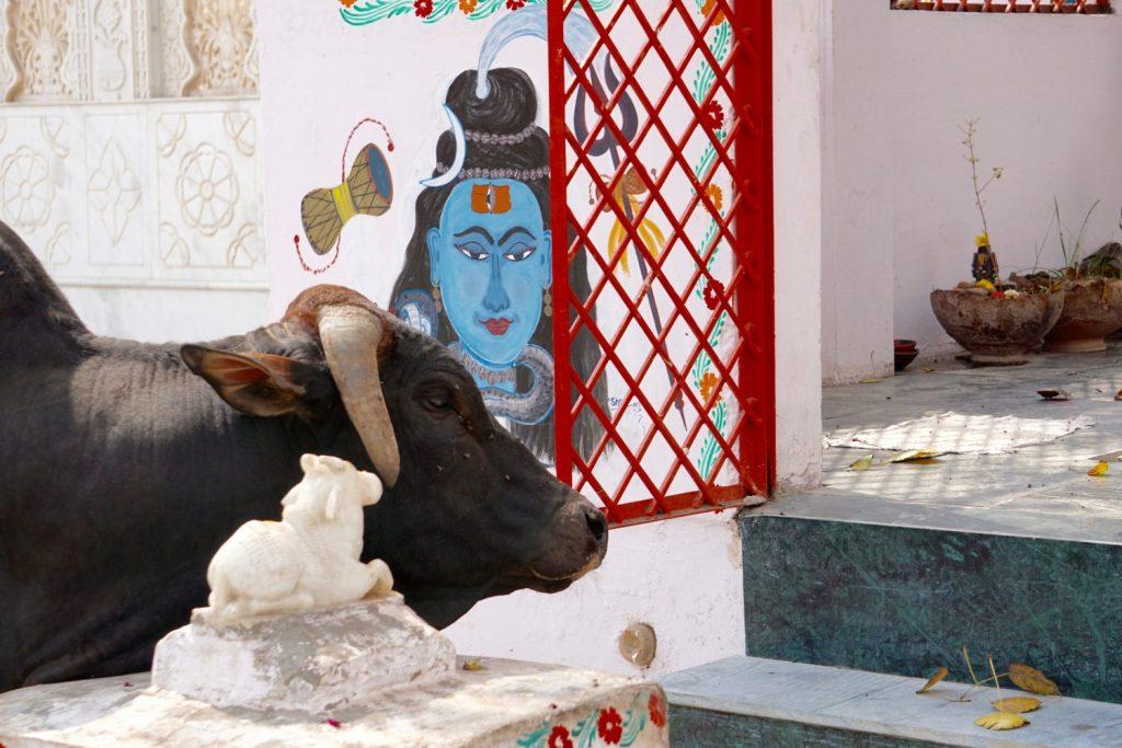 Krishna, Nandi & a cow