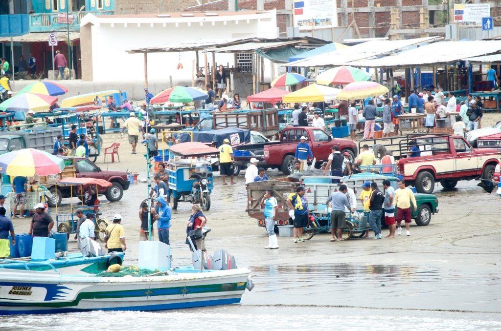 morning fish market