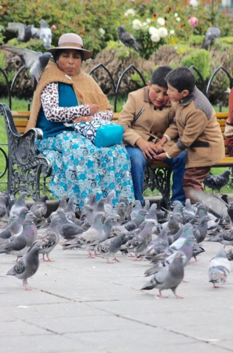 feeding pigeons in the square