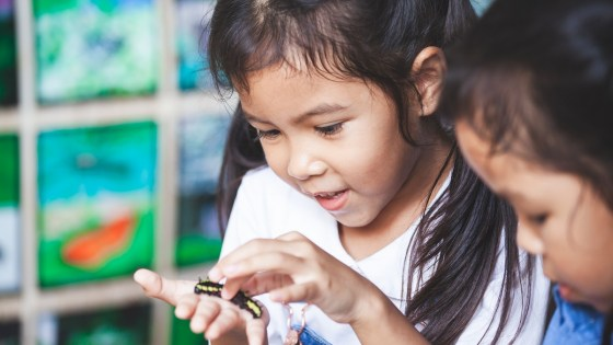 Young girl looks curiously at a caterpillar in her hand