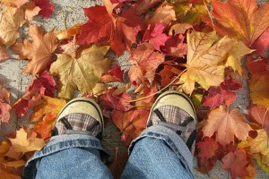 crunching-leaves