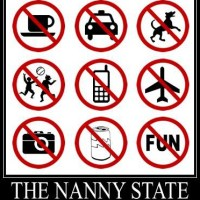 Having a closer look at the novel 'Nanny State Index'