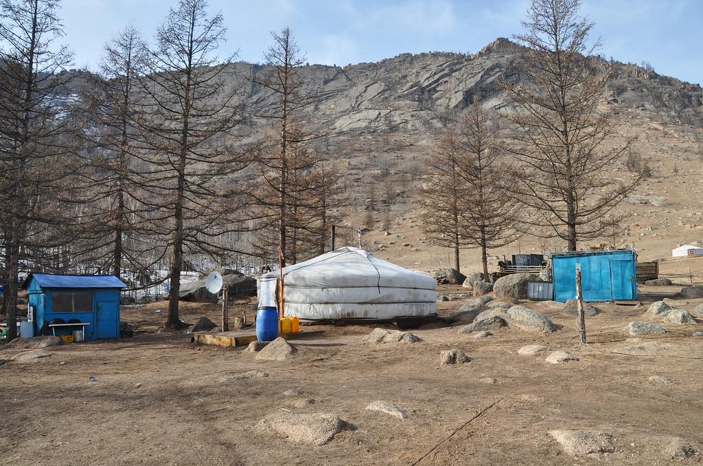 Mongolian Yurt - Terelj National Park - Mongolia