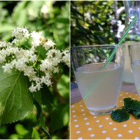 Holunder-Prosecco, selbst gemacht