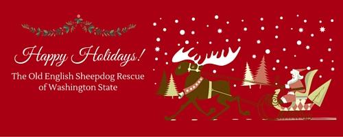 Wishing everyone a wonderful Old English Sheepdog holiday season!