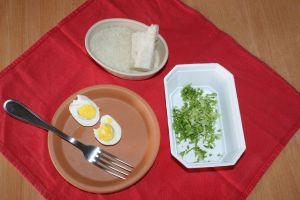 ingrédients de base : oeuf dur, salade, et pain sec