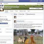 Extrait de la page facebook oeuf poule & poussin