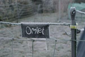 filet à poules Omlet
