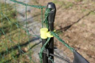 système de fermeture de la porte d'accès, sur filet à poules Omlet