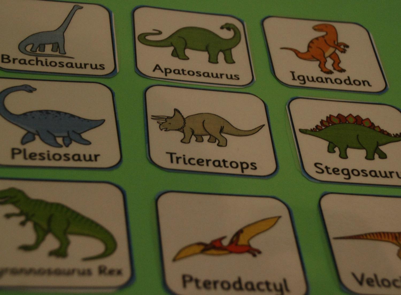 Dinosaur Lapbook Dinosaur Folder