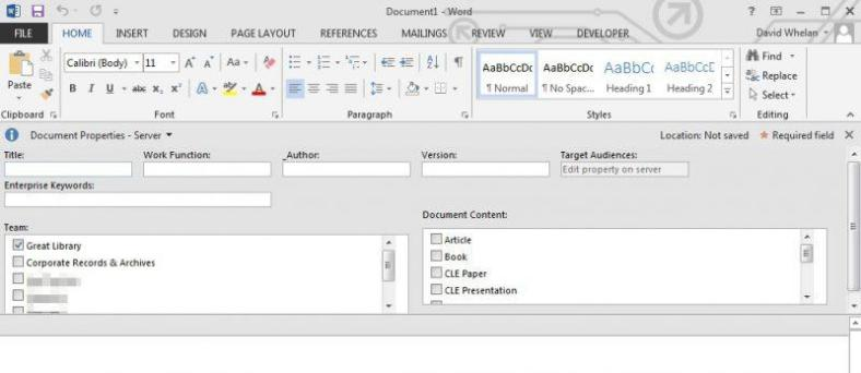 custom-document-information-panel