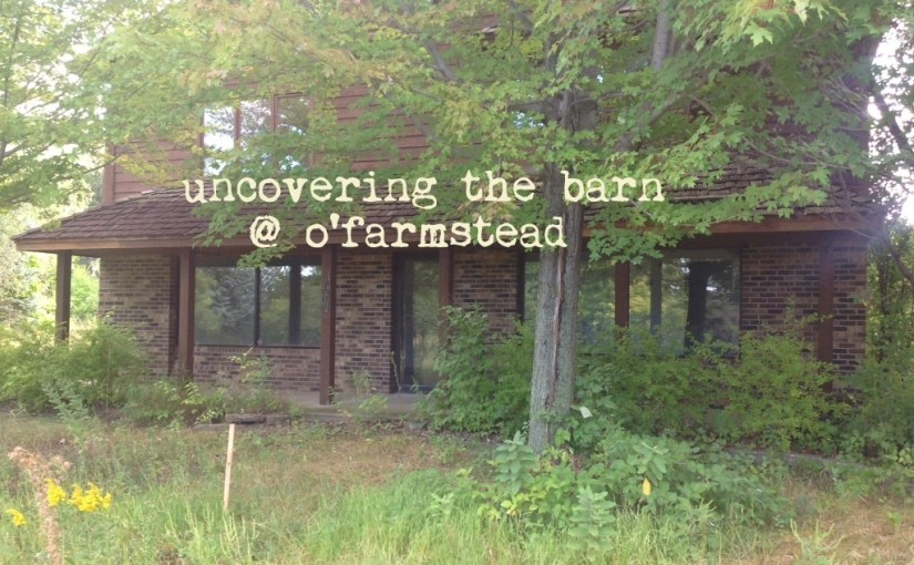 uncovering the barn, part 1