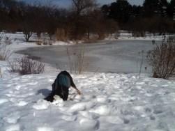 I like snow.