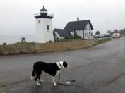 TA DA! Grindle Point Lighthouse!