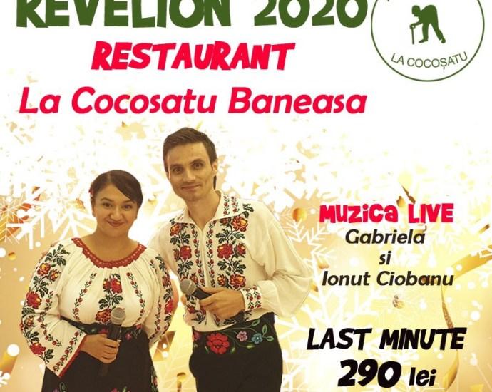 Revelion Românesc La Cocosatu' Băneasa la preț special: 290 lei
