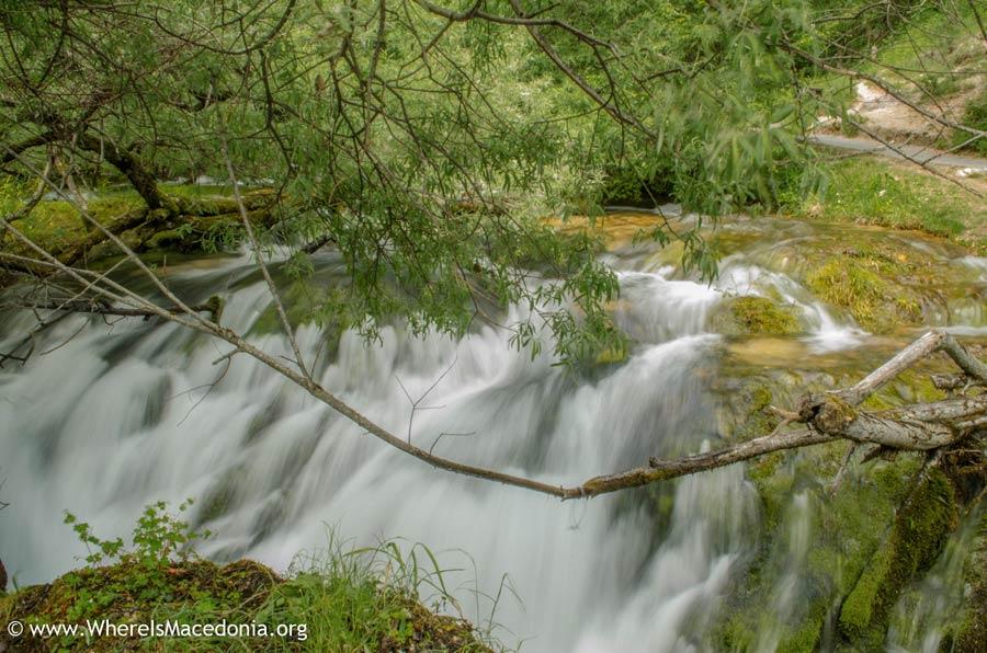 Springs in Vevcani