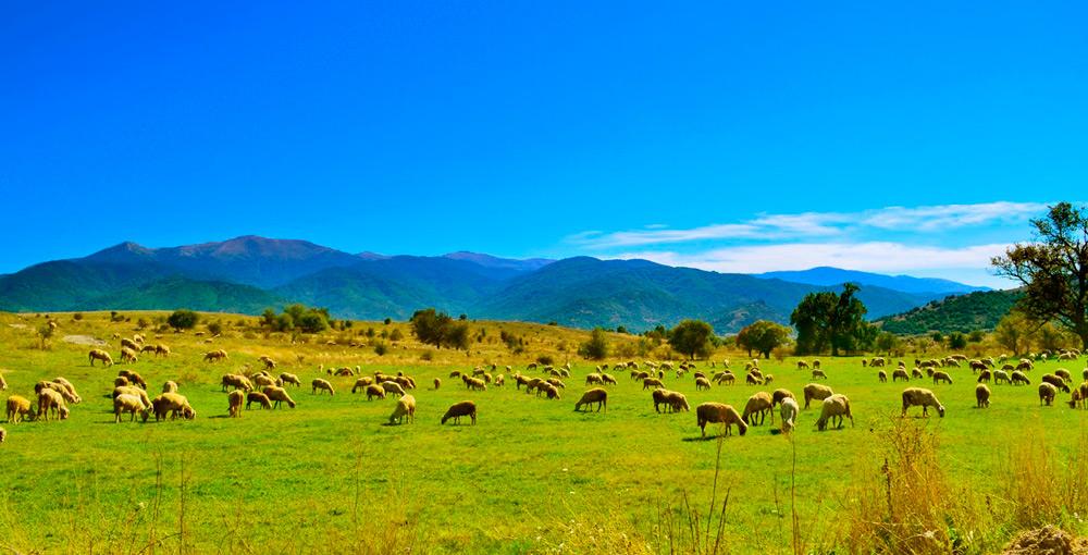 Мариово – Рурална авантура - еднодневна џип екскурзија низ Битолско Мариово