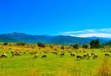 Мариово - рурална авантура