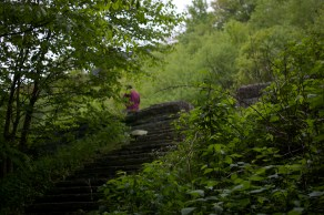 Down a path