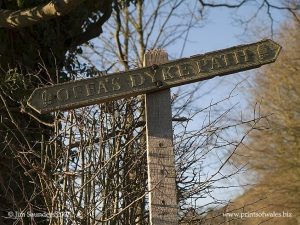 Old Fingerpost near Knighton