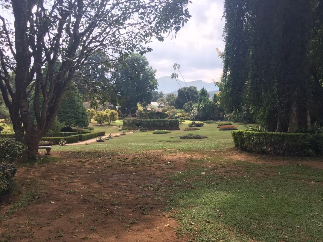 Royal Botanical Gardens in Peradeniya Sri Lanka