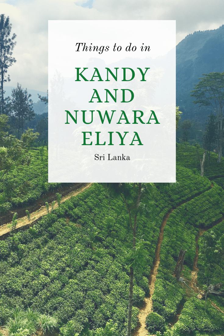 Things to do in Kandy and Nuwara Eliya Sri Lanka