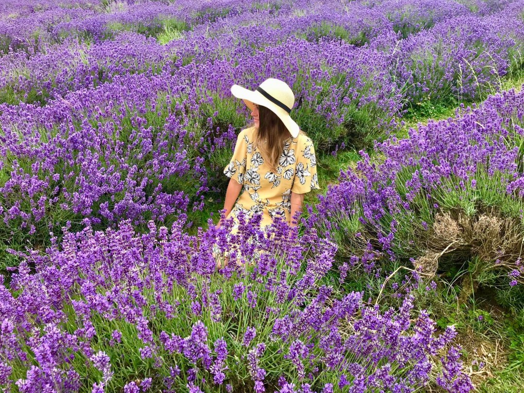 Woman in yellow dress and sunhat in field of English lavender