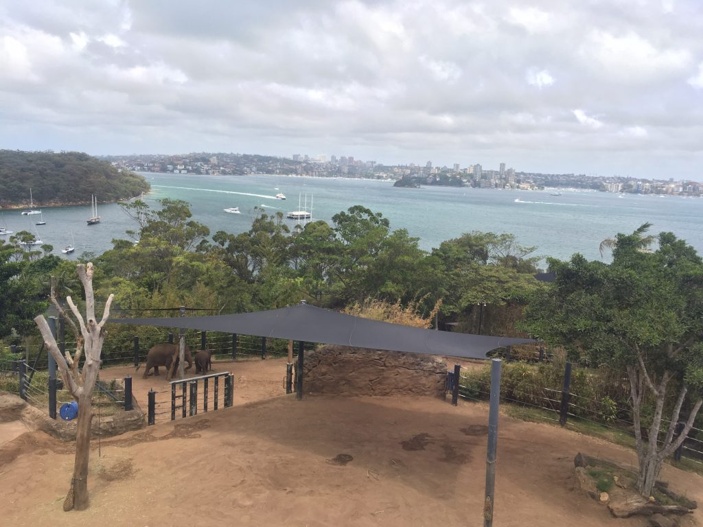 Taronga Zoo view from the cable car over the elephant enclosure and Sydney Harbour