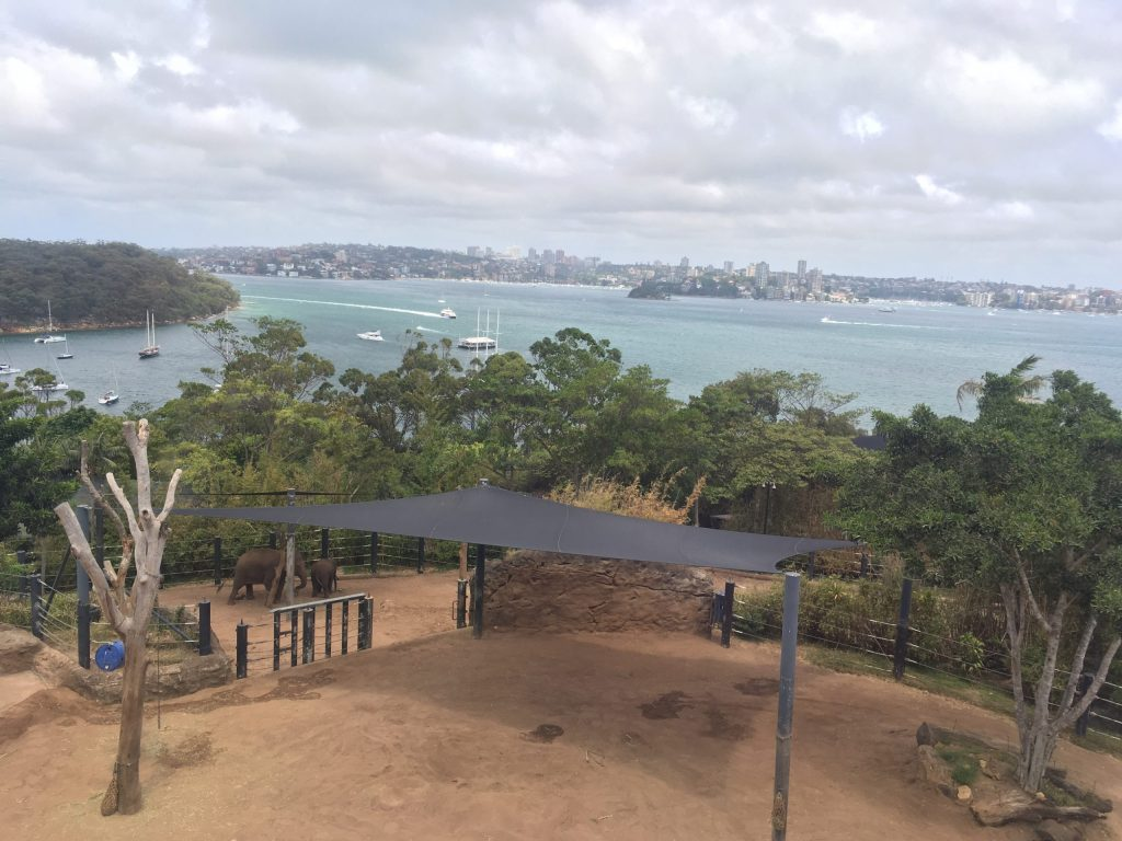 View from the cable car into the elephant enclosure at Taronga Zoo in Sydney Australia