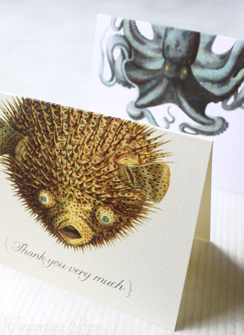 Pufferfish Thank You Notes