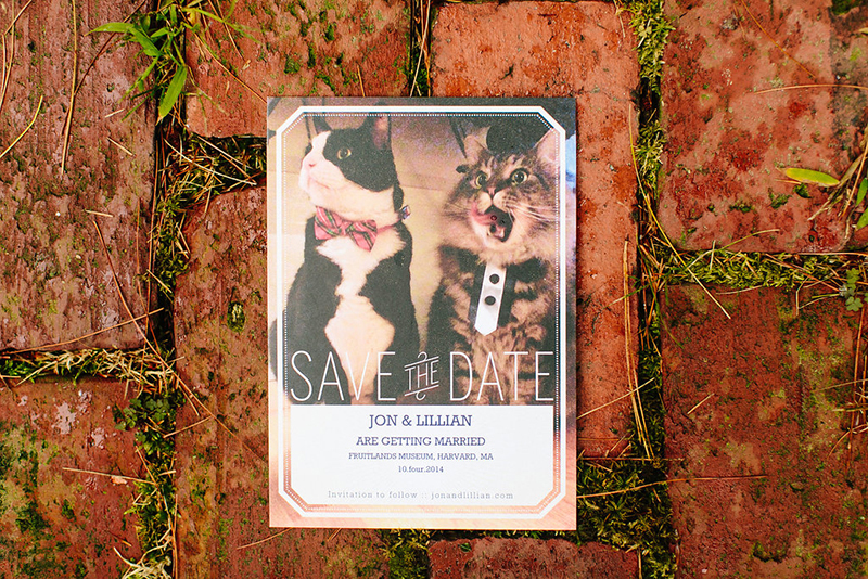Cats and creatures errrrywhere at this woodland forest wedding as seen on @offbeatbride #weddings #cats