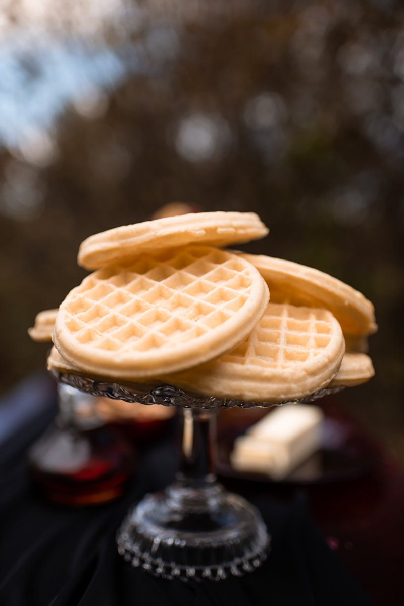 Mike & Eleven's Stranger Things wedding of our Eggo waffled, Upside Down imaginations
