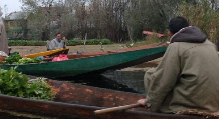 Early Morning Shikara Ride on Dal lake: Jammu & Kashmir Tourism