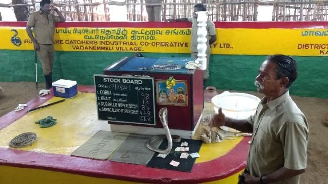 Meet King Cobra in Madras Crocodile Bank, Places to visit in Mahabalipuram India, Mahabalipuram temple, mamallapuram tourism, Mahabalipuram Shore Temple, Mahabalipuram beach, Chennai Mahabalipuram, Tamilnadu rock temples, five rathas, crocodile park mahabalipuram, dakshinachitra, dakshin chitra, Krishna butterball, arjuna's penance panch rathas