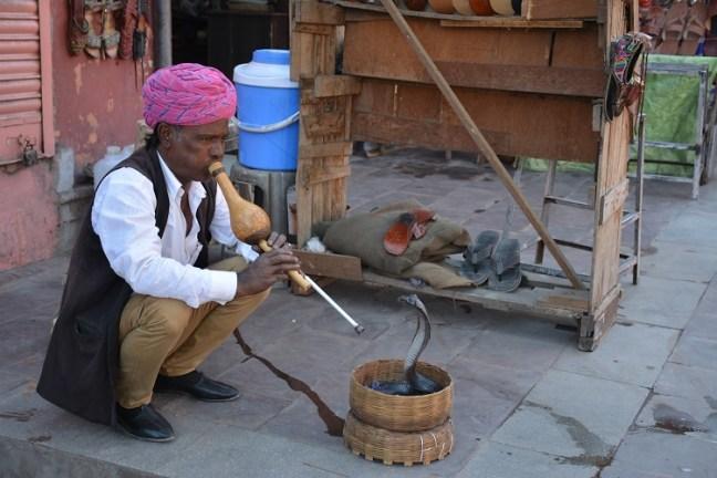 Snake Charmer at Hawa Mahal Jaipur Rajasthan