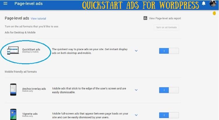 How to set up QuickStart Ads in Google Adsense for Wordpress Website