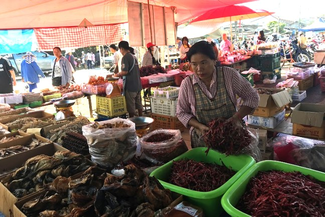 Chiang Dao Tuesday Market is an authentic Thai flavour of its culture and cuisines. One of the top things to do in Chiang Dao, a mountain town 70 kilometers from Chiang Mai in Thailand