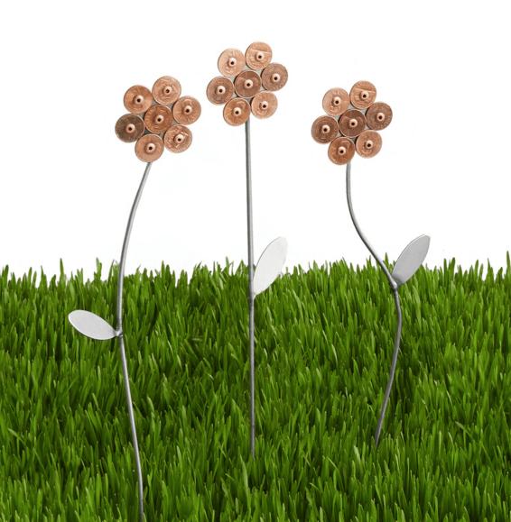 Lucky Penny Garden Flowers