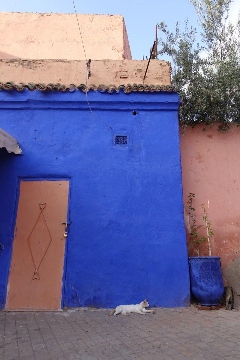 blue paint and pink door