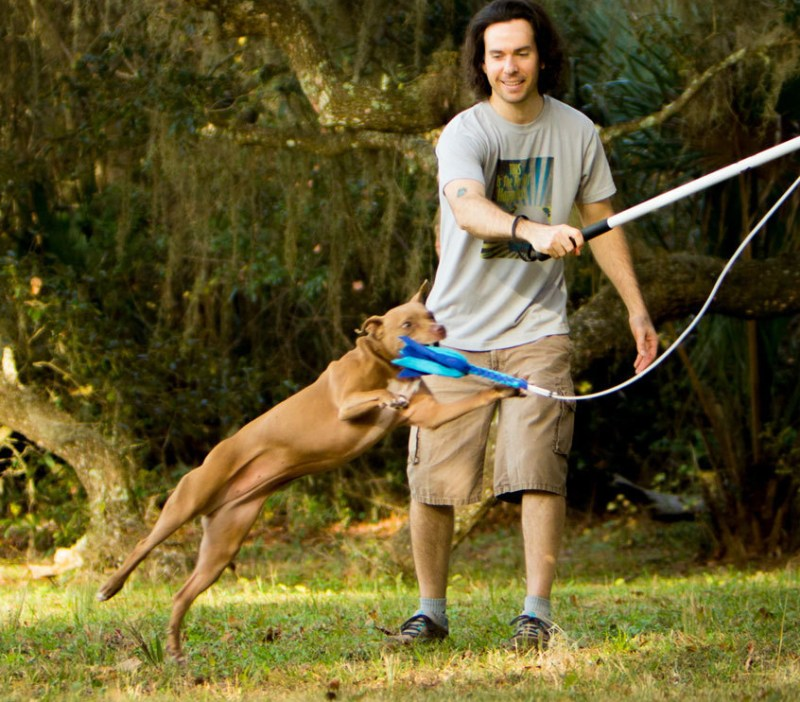 Exercising with dogs: How you AND your dog can be more active together