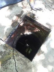 A cistern, which was capped underneath the old back porch.