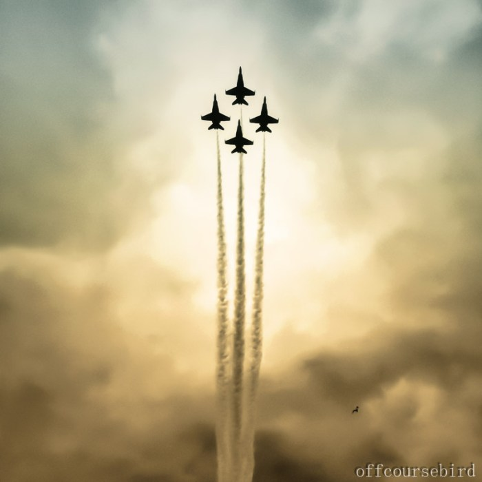 Blue Angels, Seattle Seafair