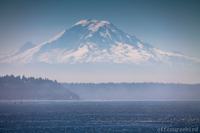 Mt. Rainier from the Puget Sounds
