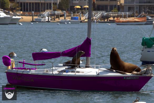 Bildnachweis: Boat hijacking by Jérôme Decq CC-BY 2.0, bearbeitet von Simon Mallow.