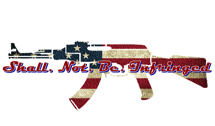 Shall. Not. Be. Infringed