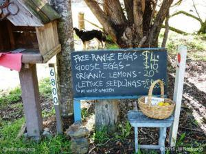 offgrid-jill-redwood sale