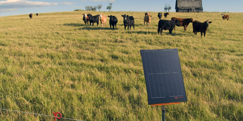 Solar Powered Electric Fence Chargers