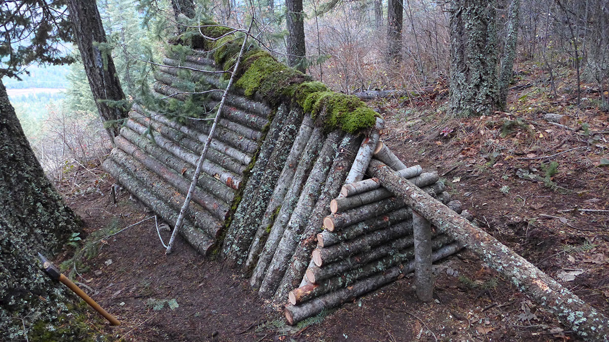 Survival shelter moss roof