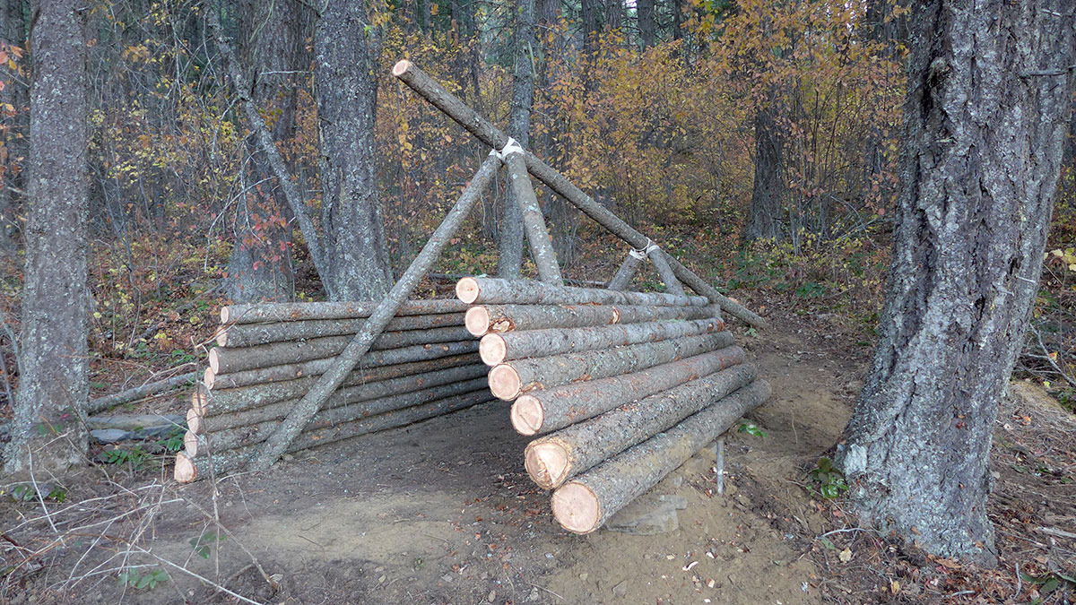 Survival shelter log siding
