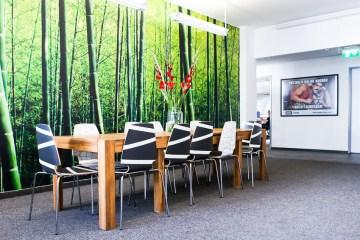 book a tiger startup office berlin